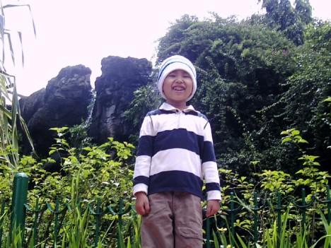 zio-in-the-jungle